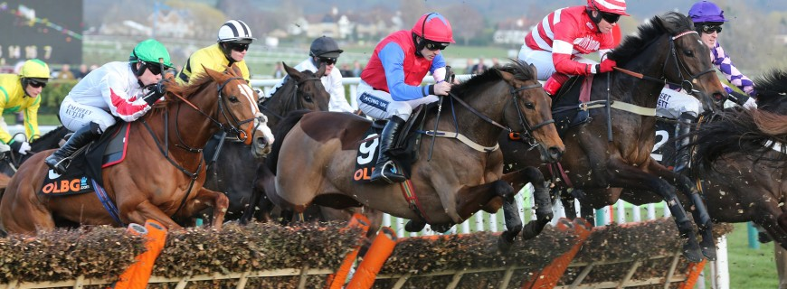 Quevega becomes first horse to win six times at Cheltenham Festival: Back on the career of a golden mare