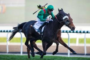 Vazirabad- DWC-gold_cup_0-Dubai Racing Club-Andrew Watkins