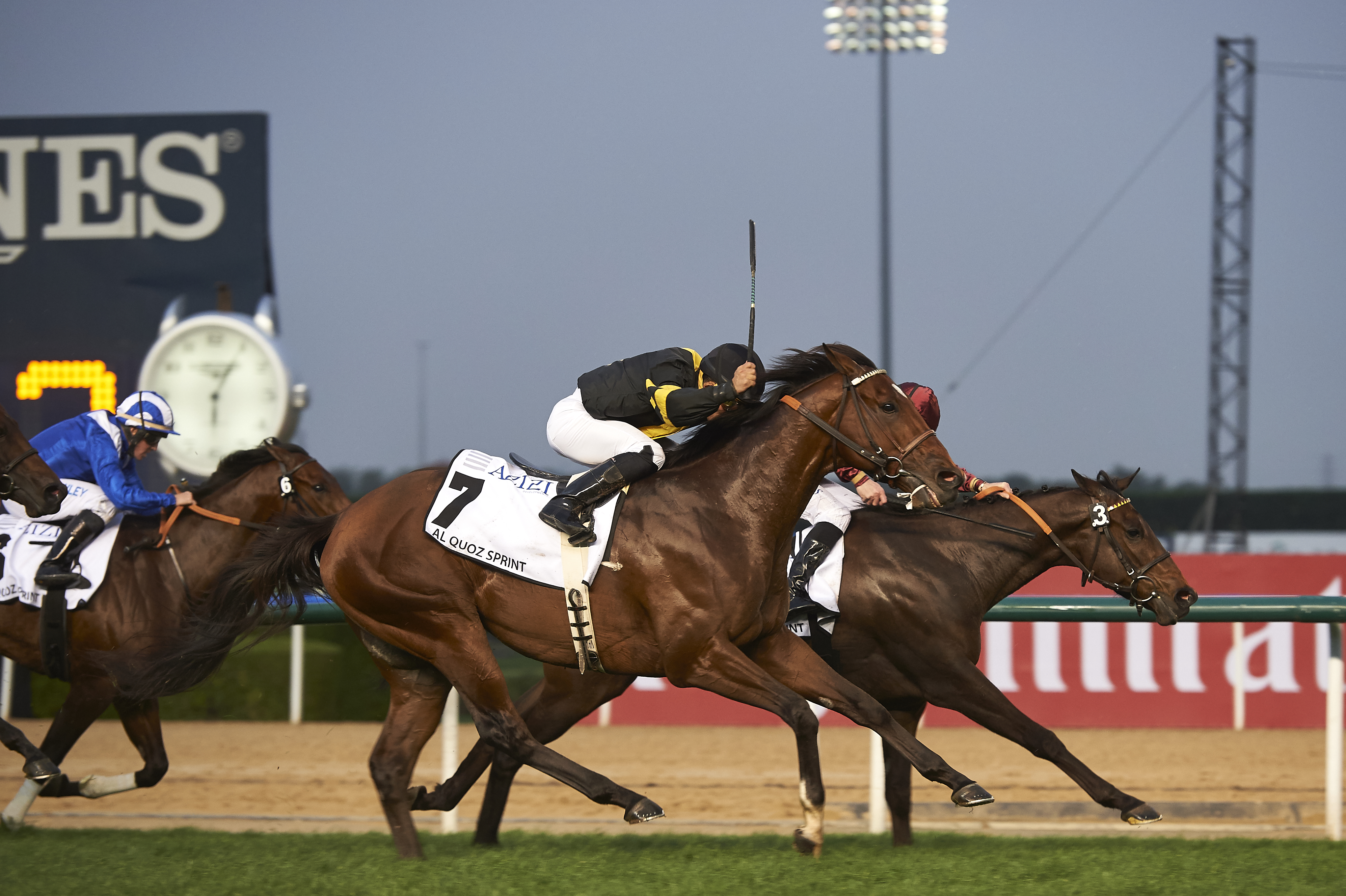 Al Quoz Sprint The Right Man - Andrew Watkins